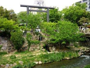 新緑の四柱神社